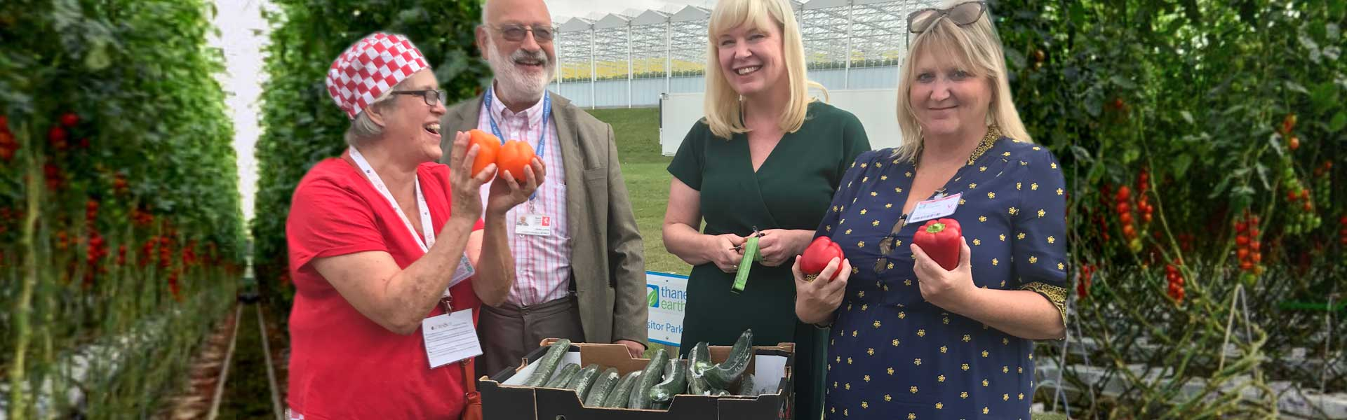 Karen Constantine and the Summer Kitchen project at Thanet Earth