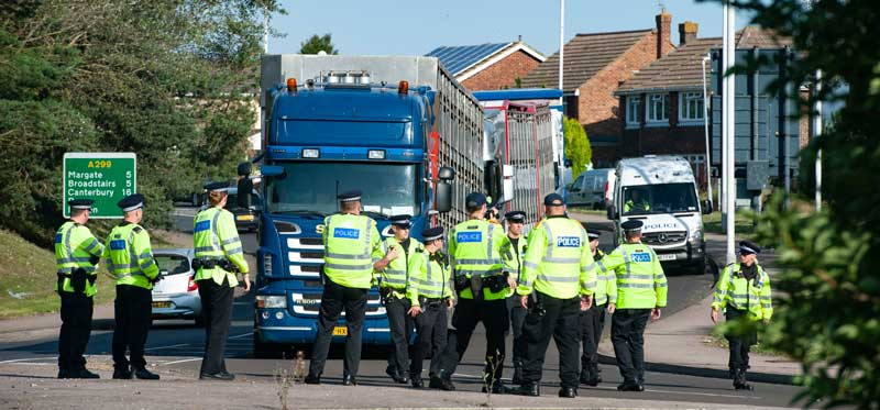 Police marshalling live animal export trucks in Ramsgate