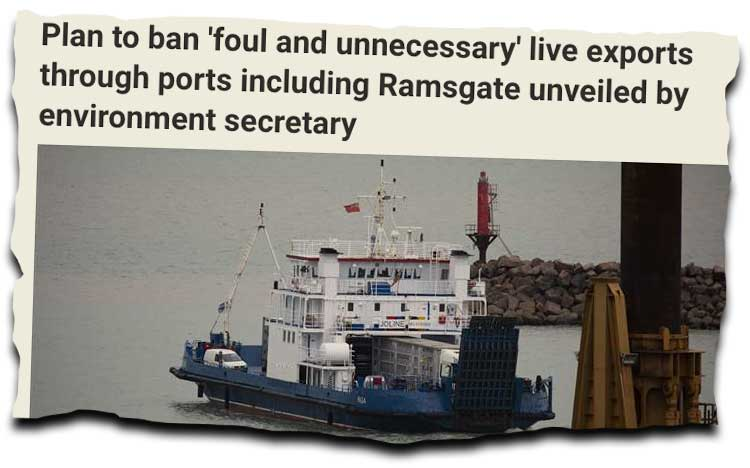 Dec 3rd news clipping about live animal exports